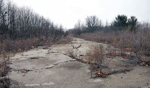 The entire length of the track's surface is still somewhat intact, from the burnout box to the shutdown area. More than thirty years of neglect has caused the asphalt racing surface to crack, and the overgrowth of the property certainly hasn't helped preserve the surface. Thousands of competition cars used this pavement from 1956 to the track's final event in 1979. Local veterinarian Howard Koch bought the property and closed the track shortly thereafter. (Photo Courtesy Greg Rourke)