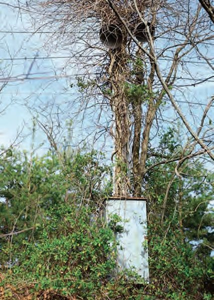 More signs that the track has been left untouched all these years is the wiring system, speakers, and lights. When most tracks are closed permanently, equipment is either reused at another facility or hauled off for scrap. At Hudson Drag Strip, everything is still there, just as it was in 1994.