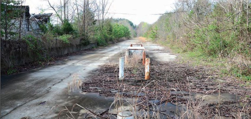 Intense overgrowth has turned this drag strip into a very eerie place. The bleachers are completely consumed by the trees and weeds; the pit side of the track is equally overgrown. However, the track surface appears to be in decent shape, as the concrete starting line was only a few years old at the time of closing.